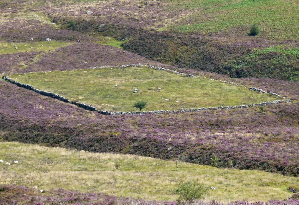 Ace of Diamonds, Dartmoor