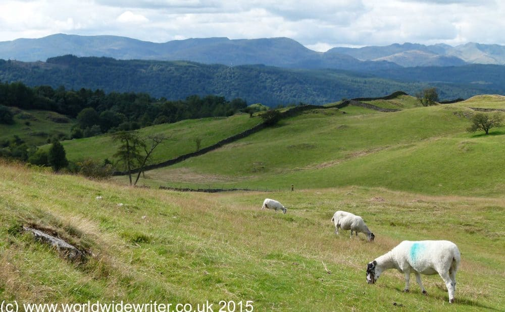 The Dales Way, one of England's long distance paths