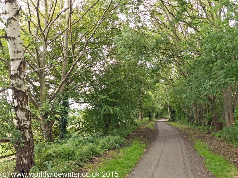 Wylam Waggonway, near Newcastle