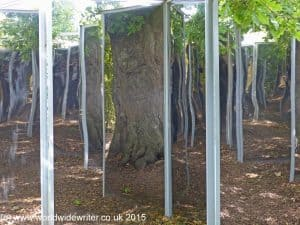 Oak Mirror, Burghley House Gardens