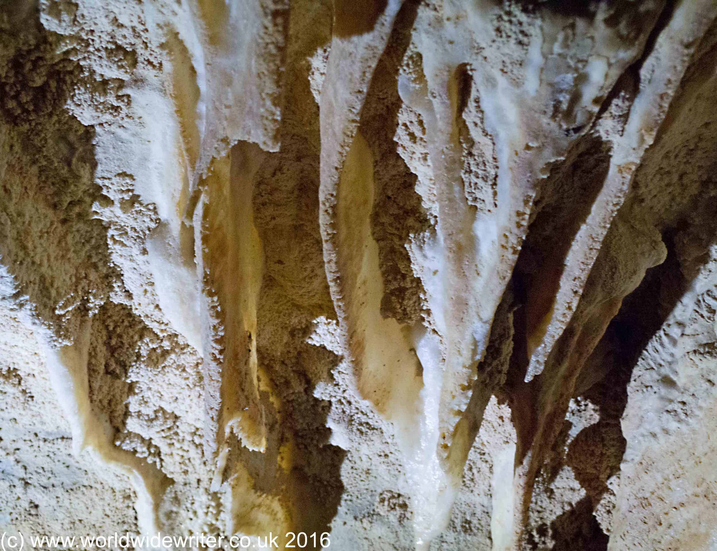 Coral and limestone formation