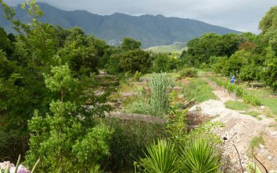 History, Food and Countryside: What to Do in Swellendam