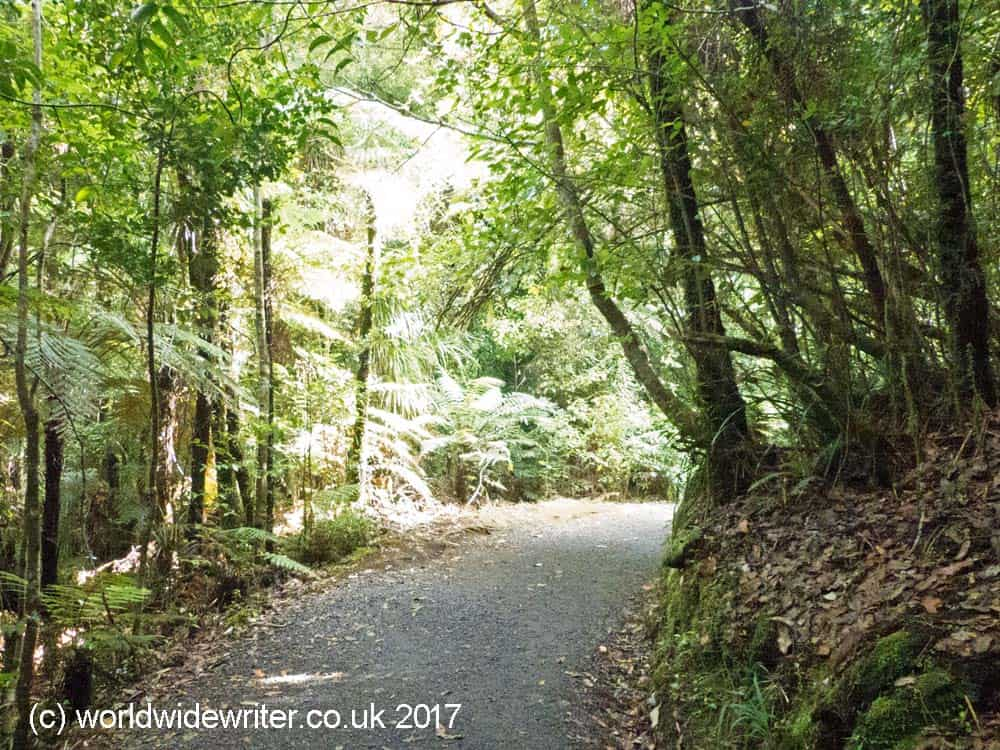 Track to the Bridal Veil Falls, New Zealand