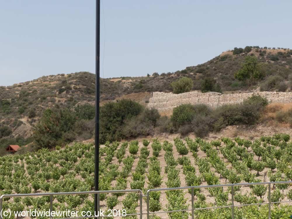 Ktima Christoudia vineyard