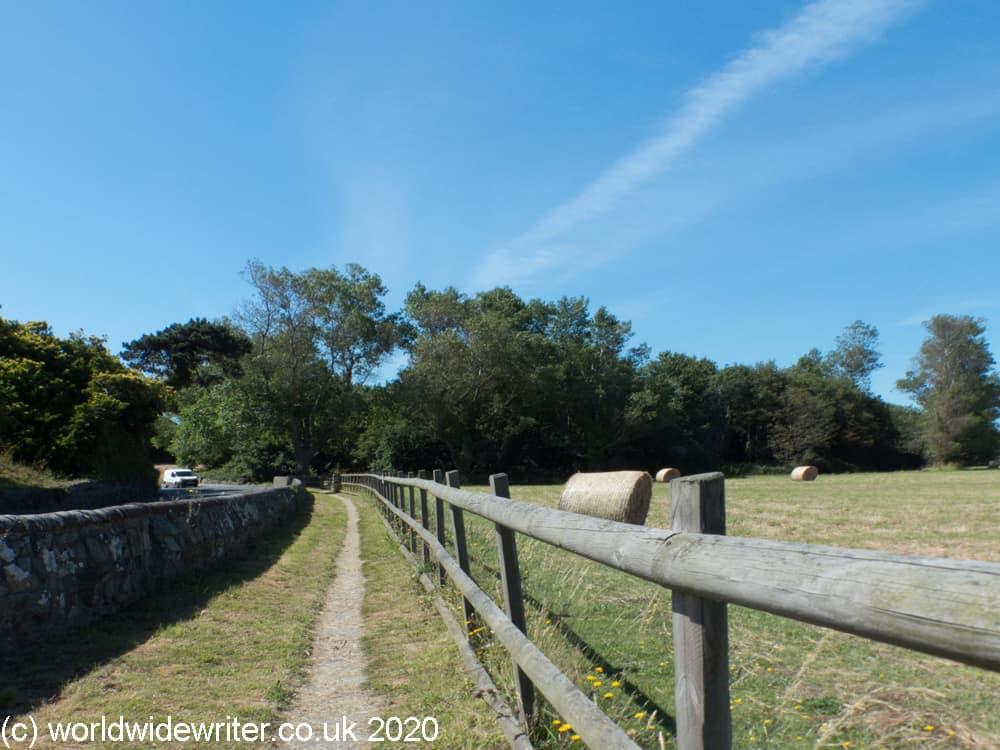 Path beside a field