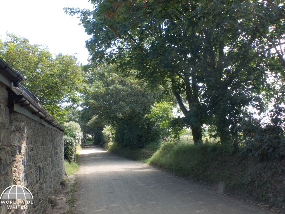 Shady lane with wall on one side and trees on the other