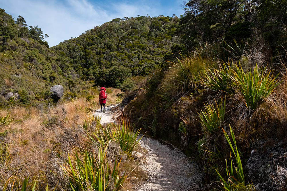 Hiker on a trail between hills covered with plants and trees