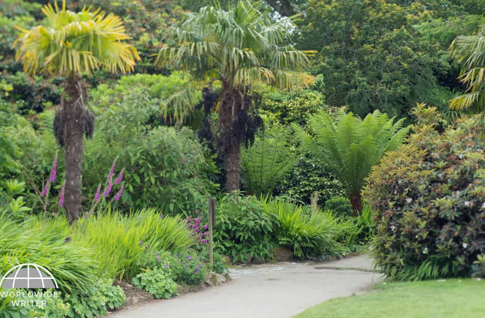 Pathway through the gardens with exotic trees and bushes