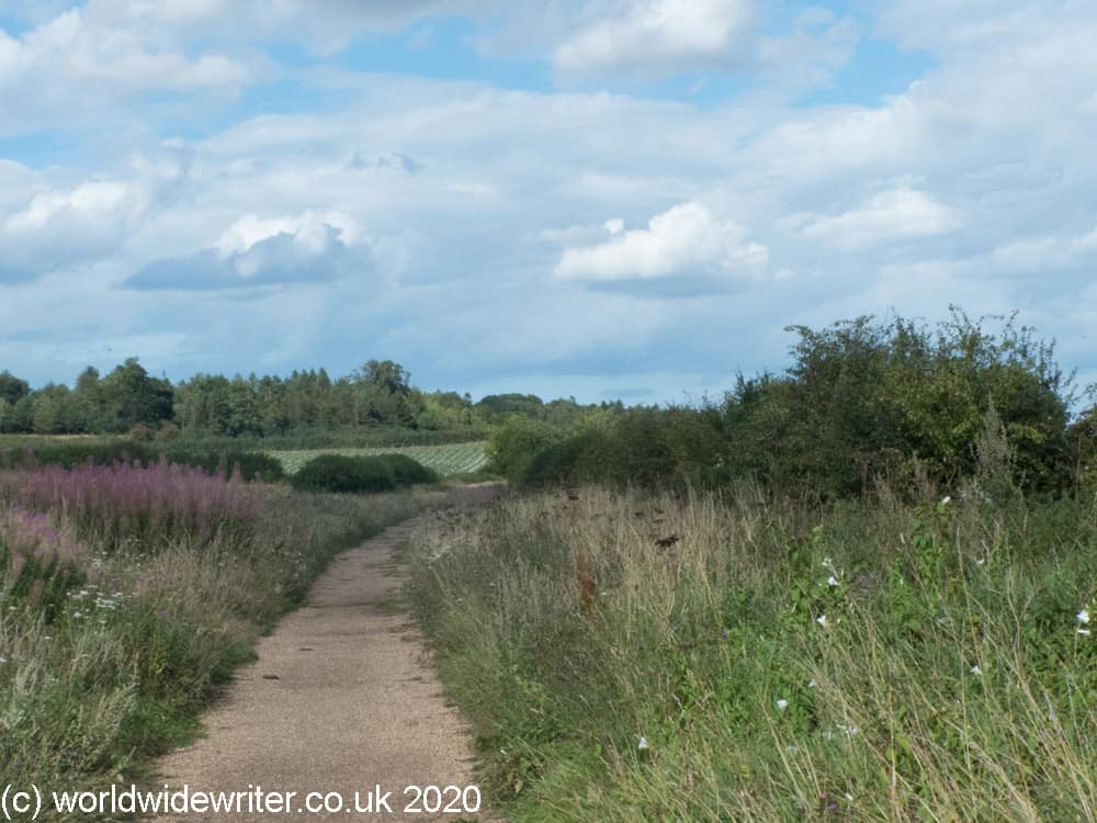 Country footpath, Walsingham
