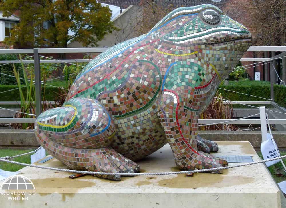 Glass fibre toad