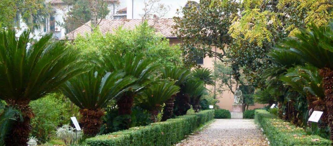 Botanic Gardens, Pisa