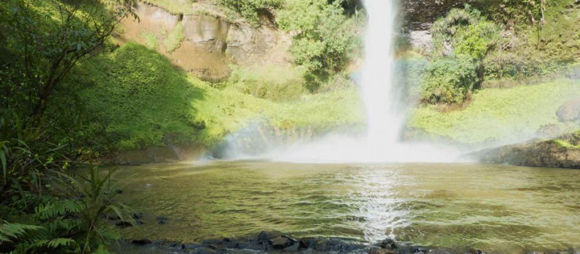 Bridal Veil Falls, Waikato