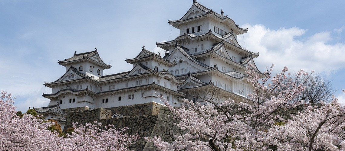 Japanese castle and cherry blossom